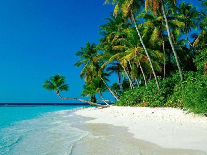 Самые красивые пляжи (32 фотографии)
