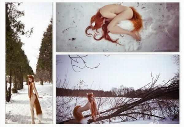 Лисий хвост (2 фотографии)