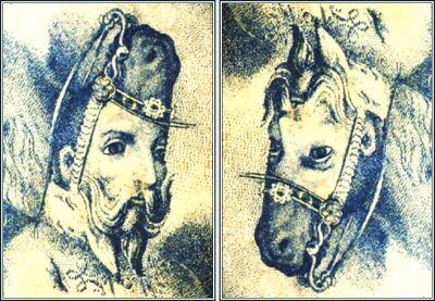 horse.jpg (42317 bytes)