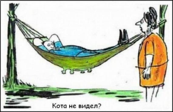 Смешные карикатуры (33 картинок)