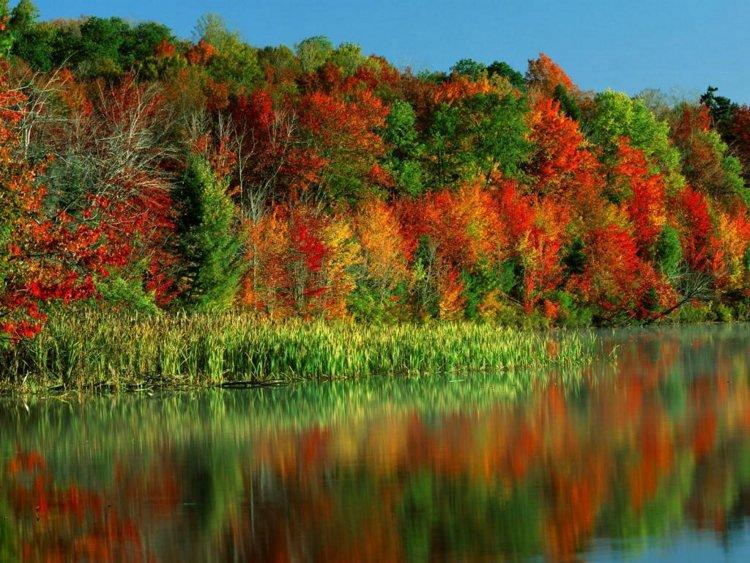 40 замечательных планов на осень