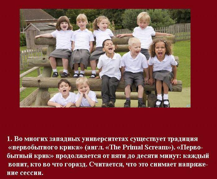 Студенческие традиции (10 фотографий)