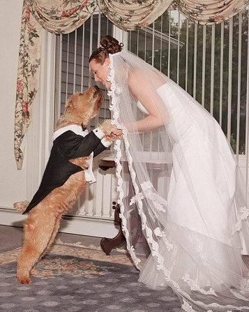 Ах эта Свадьба, пела и плясала...