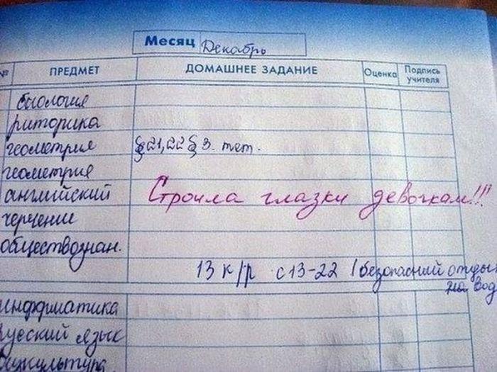 Глупости из школьных дневников
