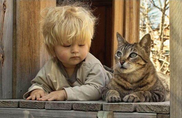 12 уроков любви Чему можем учиться своих детей