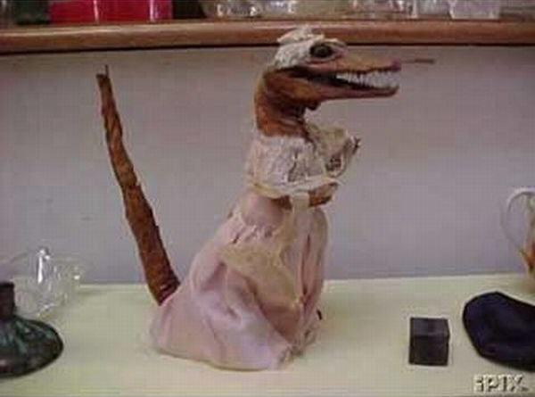 Сушеная невеста для аллигатора. 2001 год.