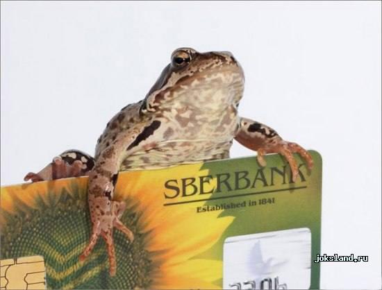 Плывет жаба, видит - карась плещется