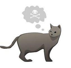 Как определить что ваш кот хочет вас убить? (10 картинок)