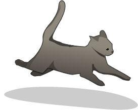 фото кот ест траву