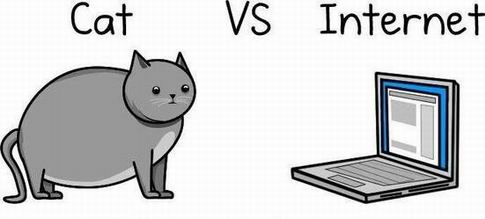 Кот против интернета (21 картинка)