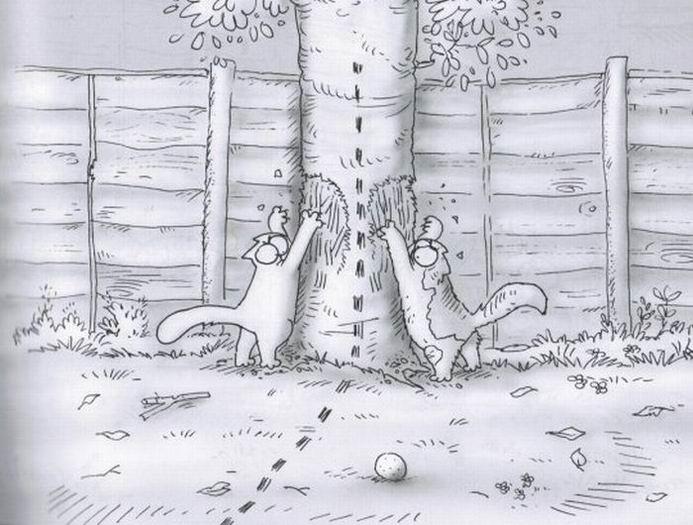 кот саймон ловит муху