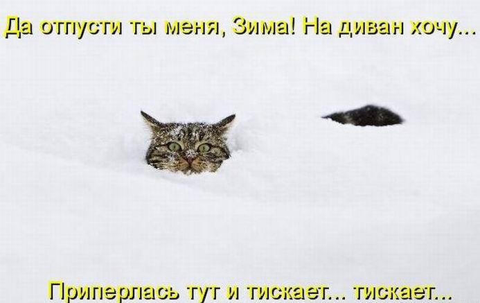 2 дурня в снегу фильм 1977 - википедия переиздание  wiki