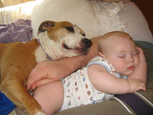 Позитив дня: Такие милые детки (23 фотографии)