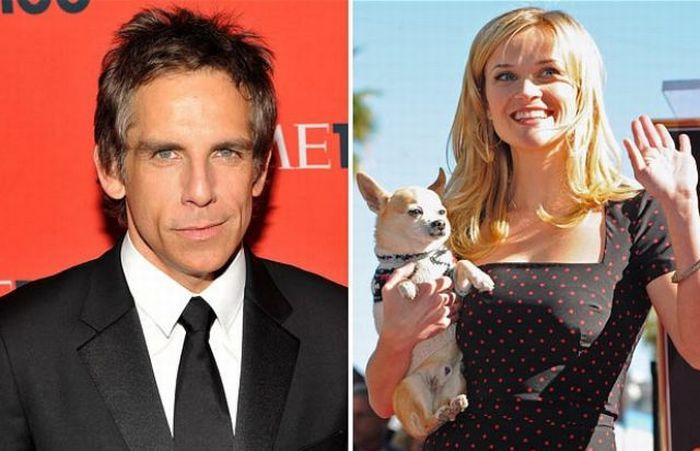 Рейтинг богатейших звезд Голливуда за 2010 (10 фотографий)