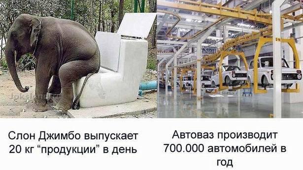 Все познается в сравнении (10 фото)