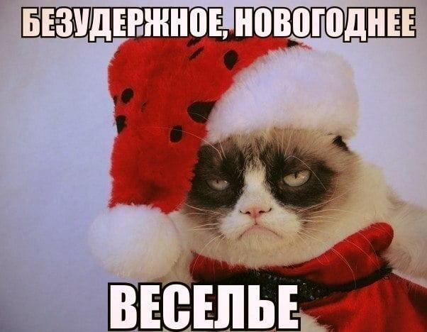 Подборка прикольных фото про красную шапочку