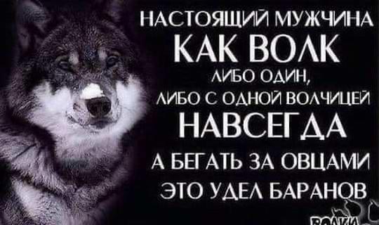 Настоящий мужчина как волк