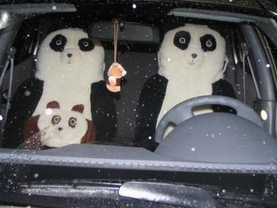 Панды за рулем