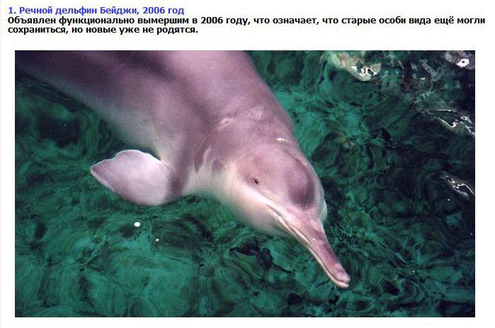 Животные, которых мы больше не увидим (9 фото)