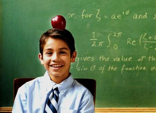 Чем отличаются ум и хитрость?